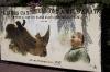 Вывеска недалеко от носорога