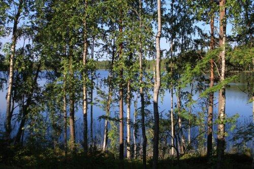 Вид на озеро из коттеджа